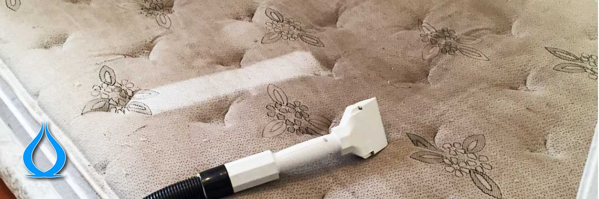 Single mattress cleaning
