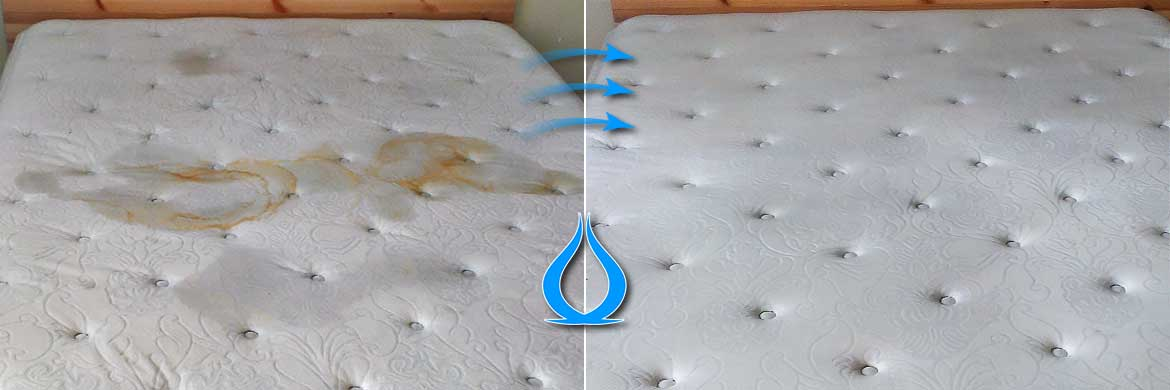 Professional Mattress Cleaning London Uk Sofa Cleanic
